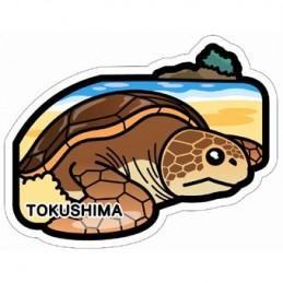 Tortue marine (Tokushima)