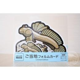 Oxudercinae (gobie du Japon) (Saga)