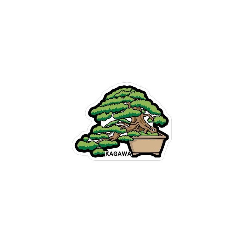 Bonsai de pin (Kagawa)