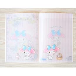Clear plastic folder (large)
