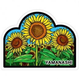 (Yamanashi)