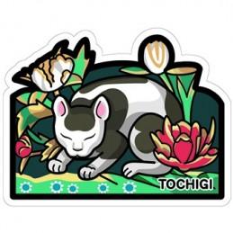 (Tochigi)
