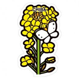 菜の花(千葉県)