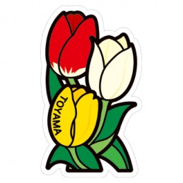 Tulipe (Toyama)
