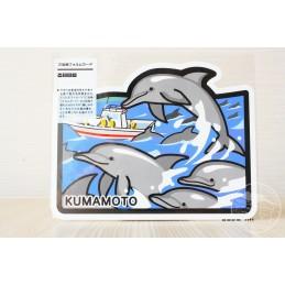 Observation des dauphins (Kumamoto)